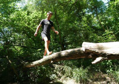 Balance Baum Bach 4