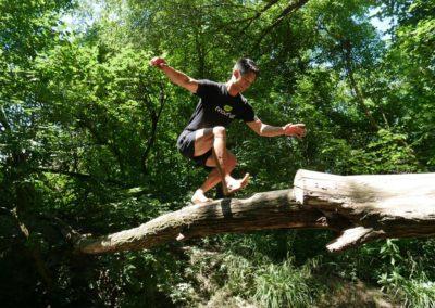 Balance Baum Bach 6